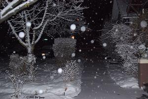 28Jan2013_1_The-Buzz_Mozart-Bday_Snow_Opener
