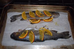 08Feb2013_1_Captains-Shack_Broiled-Trout_In-Pan