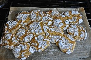 02Apr2013_1_Captain's-Shack_Robins-Lemon-Cookies_Cooling