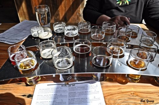 10 Barrel Beer Sampler