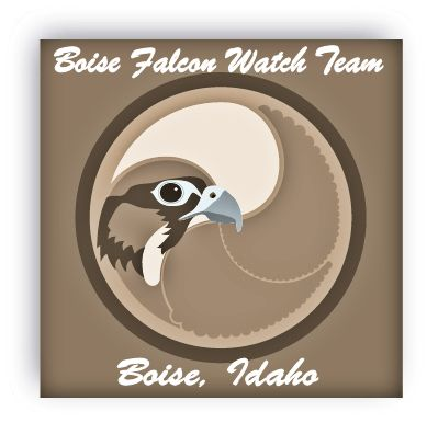 The Boise Fledge Watch Team logo by Shawn Carman.