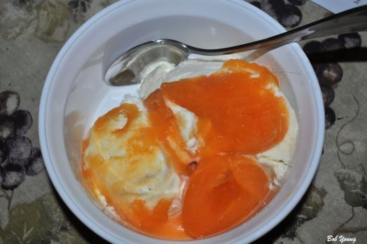 Vanilla Ice Cream with Apricot Purée