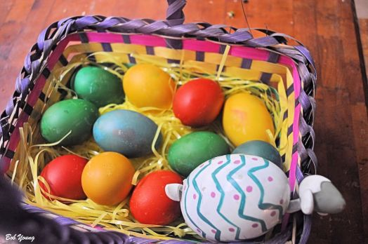 14April2014_1_Captains-Shack_Natural-Easter-Egg-Colors