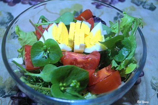 Fresh green salad with Idaho products.
