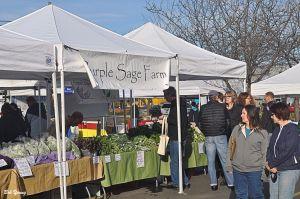 05April2014_1c_Boise-Farmers-Market_Purple-Sage-Booth