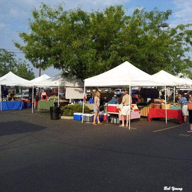 Some the the market area. The tent in the foreground is Meadowlark Farms, where I get my eggs.