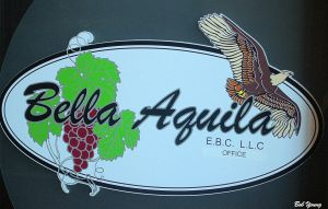 17Aug2014_1_Bella-Aquila-Eagle_Sign