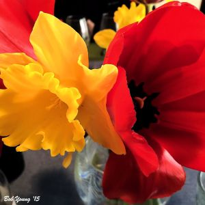 05April2015_1_My-BDay_Table-Flowers