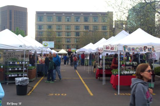 Those who braved the cold drizzle loved the market experience.
