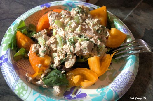 Tuna Salad Fresh Greens Local Yellow Tomatoes
