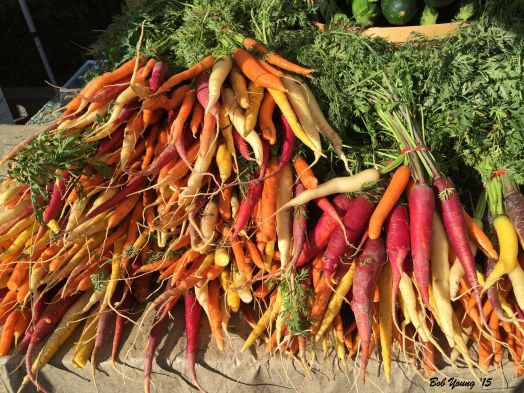 Even as unseasonably hot  as it has been, the heirloom carrots are great!