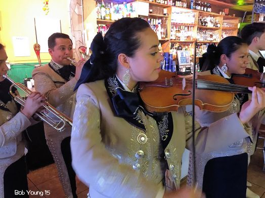 Some of the Mariachi players.