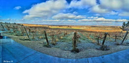 Part of the Snake River AVA from Parma Ridge Winery tasting room. Beautiful!