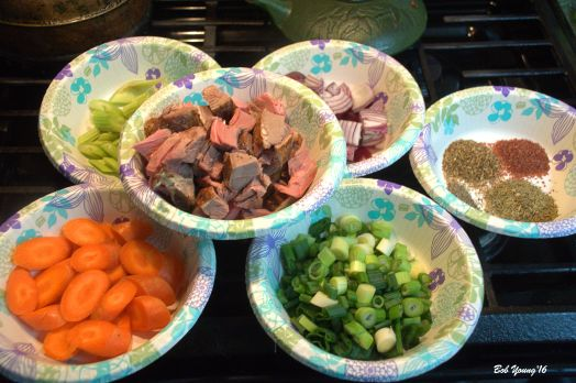 Prep for the Irish Stew. Carrots, celery, lamb cubes ()Felzien lamb!), Red onion, green onion and spices.